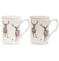 This beautifully illustrated line of new kitchenware will be sure to have pride of place in any home at Christmas time