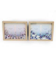 An assortment of 2 Meadow & Garden Box Frames