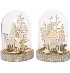 A beautifully illuminated woodland scene perfectly set inside a large glass cloche