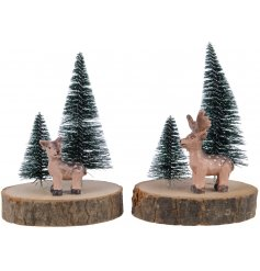 Add to any Natures Love inspired scene for a charming woodland touch
