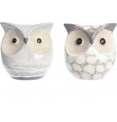 A assortment of 2 Grey Terracotta Owls