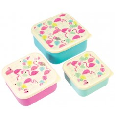 A set of 3 Flamingo Bay Stacking Lunch Boxes