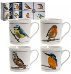 A set of 4 bird mugs