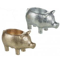 An assortment of 2 Gold/Silver Pig T-light Holders