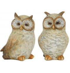 An assortment of 2 Resin Owl Decorations