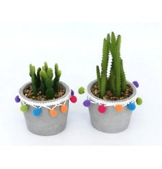 An assortment of 2 Colourful Pompom Cactus Decoration