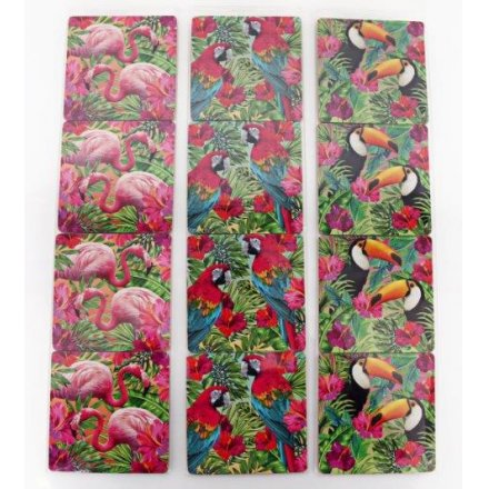 Set Of 4 Tropical Coasters, 3 Assorted