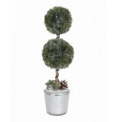 A fine quality twin topiary plant set within a classic silver pot.