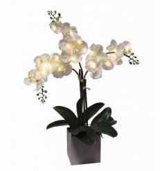 A luxury artificial Orchid plant with LED lights.