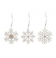 Bring a sparkling touch to any themed Tree decor this Christmas time with this beautiful assortment of hanging snowfla