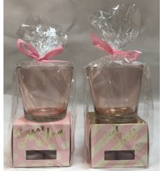 Bring a sweet treat scent to your home spaces with these deliciously assorted sets of scented candles and holders