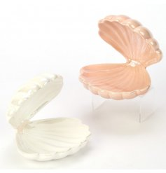 An assortment of 2 Enchanted Sea Shell Jewellery Trinket Trays