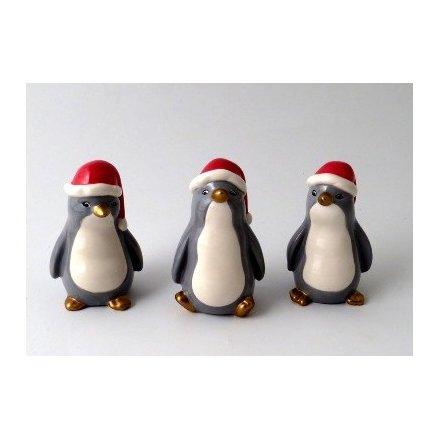 Gold Beak Christmas Penguins, 3a