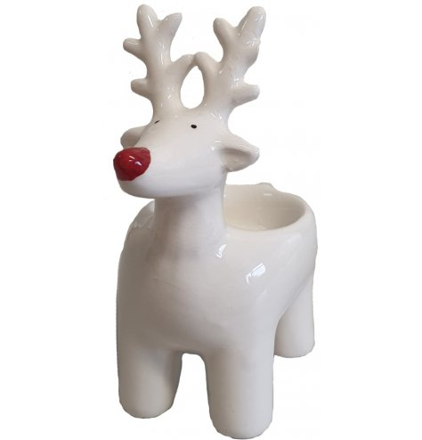 A contemporary and cute reindeer figure with a red Rudolf nose and t-light holder feature.