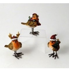 A cute mix of Robin Red Breasts sweetly decorated with festive features