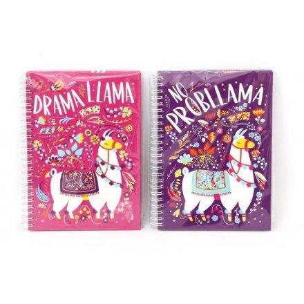 Colourful Llama Assorted Notebooks