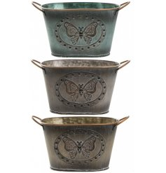 An assortment of 3 Small Butterfly Metal Trough Planters