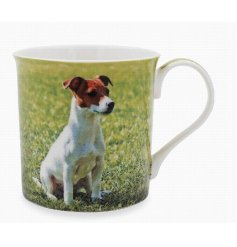 This adorable Jack Russell themed mug displays a sweet smiling portrait of a happy pup!