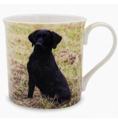 A beautifully printed mug featuring a portrait image of the well loved Labrador