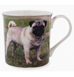 This adorable pug themed mug displays a sweet smiling portrait of a happy pup!