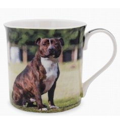 This adorable Staffie themed mug displays a sweet smiling portrait of a happy pup!