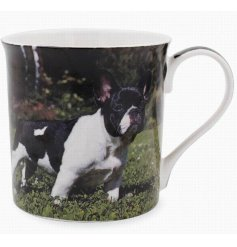 This adorable frenchie themed mug displays a sweet smiling portrait of a happy pup!