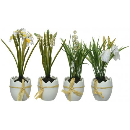 Spring Flowers in Egg Pots