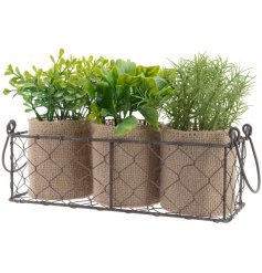 Bring a charming Rustic touch to your windowsills or shelves with this wire tray of potted artificial herb plants