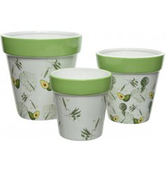 A charming assortment of Terracotta based planters set with a green and white Vegetable print