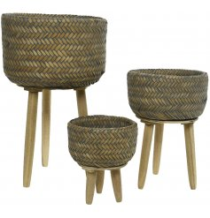 A beautiful set of woven planters on wooden stands in a natural dark wash material. An on trend interior item.