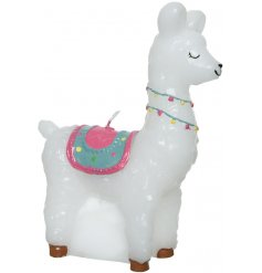 A colourful and quirky alpaca shaped candle. A fun and fabulous gift and home accessory.