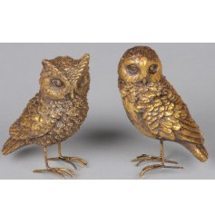 Bring a distressed setting to any interior or display set up with this charming assortment of standing bird ornaments