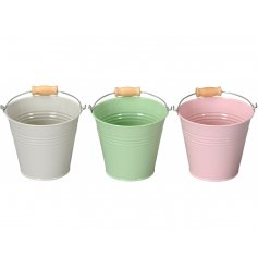 A mix of 3 pretty pastel coloured buckets with wooden handles. Perfect for planting and storage.