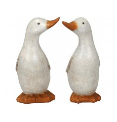 An assortment of 2 shabby chic style duck ornaments with a rustic white finish. Charming decorations for the home.