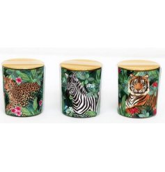 An assortment of 3 glamorous candle pots with a tropical design. Each candle pot includes a different safari animal.