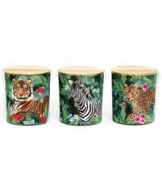 A mix of 3 tropical design candle pots with safari animals. Each candle pot has a chic gold lid.