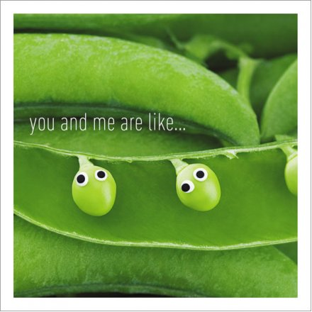 You And Me Are Like... Greeting Card