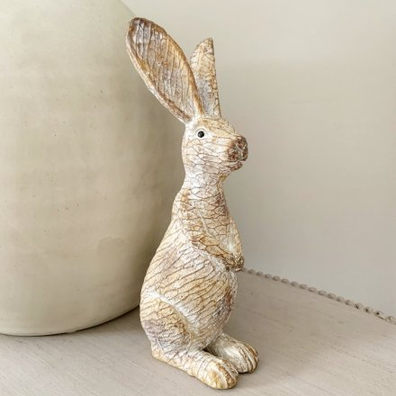 Bring a Country Charm to your interior with this delightfully posed rabbit ornament