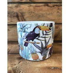 A chic ceramic planter with a colourful tropical design featuring toucans.
