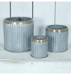 A Set of 3 Large Ribbed Zinc Planters featuring an added bronzed rim decal