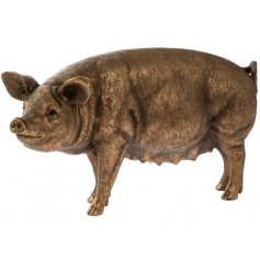 A fine quality bronze pig ornament from the popular country living bronze reflections range.