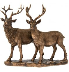 A stunning stag and reindeer ornament from the popular bronzed reflections range.