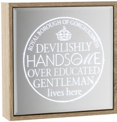 A unique light up sign set upon a glass mirror. A humorous gift item for friends and loved ones.