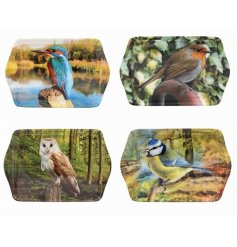 A mix of 4 small trays, each with a photographic image of a bird.