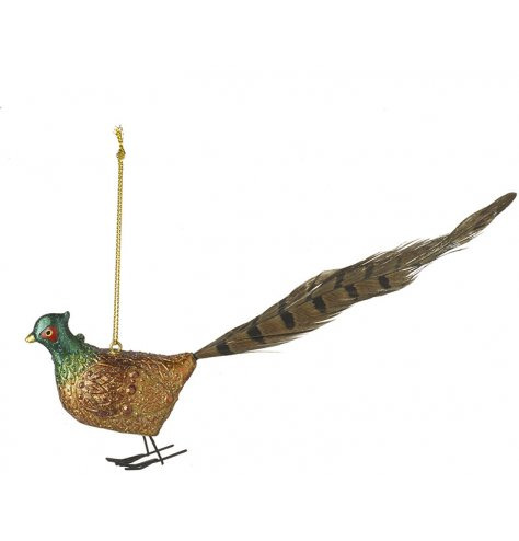 A country living pheasant hanger with intricate patterned feathers and a feather tail.