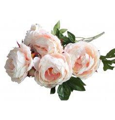A beautiful bouquet of rosey pink peony flowers