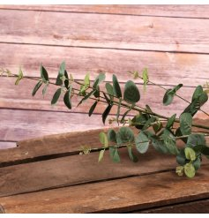 An artificial spray of green Eucalyptus, a perfect accessory for any decorative vase or jug in the home