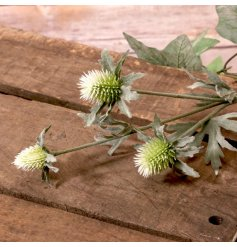 An artificial bunch of long stemmed thistles in a green tone,