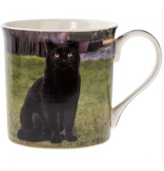 A fine quality black cat design mug with gift box.