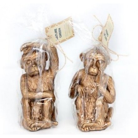 Gold Monkey Candle, 2a